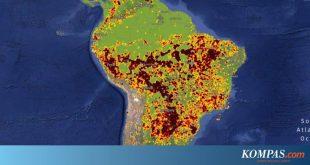 Luas Hutan Amazon yang Terbakar di Brasil 28 Kali Luas Jakarta – Kompas.com – Internasional Kompas.com