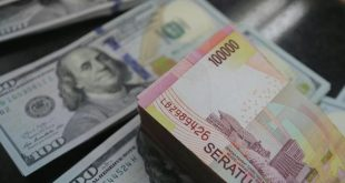 Rupiah Akhirnya Tumbang, Gara-gara Dikritisi DPR? – CNBC Indonesia