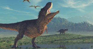 Pemusnah Dinosaurus Bukan Gunung Berapi – VIVA – VIVA.co.id